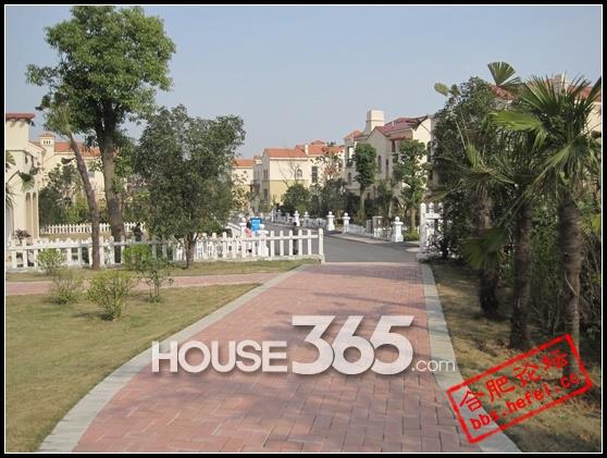 别墅欧式后花园设计实景图