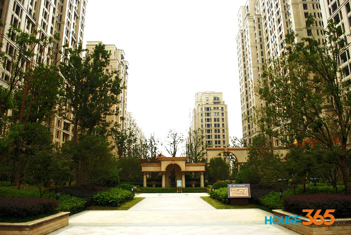 绿城玉兰公寓中心景观