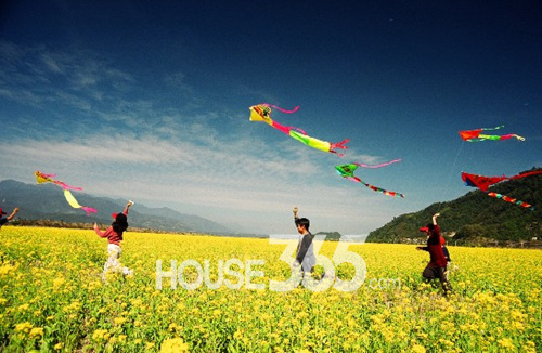 3月26日27日 到置地广场邀您放风筝 -房产资讯