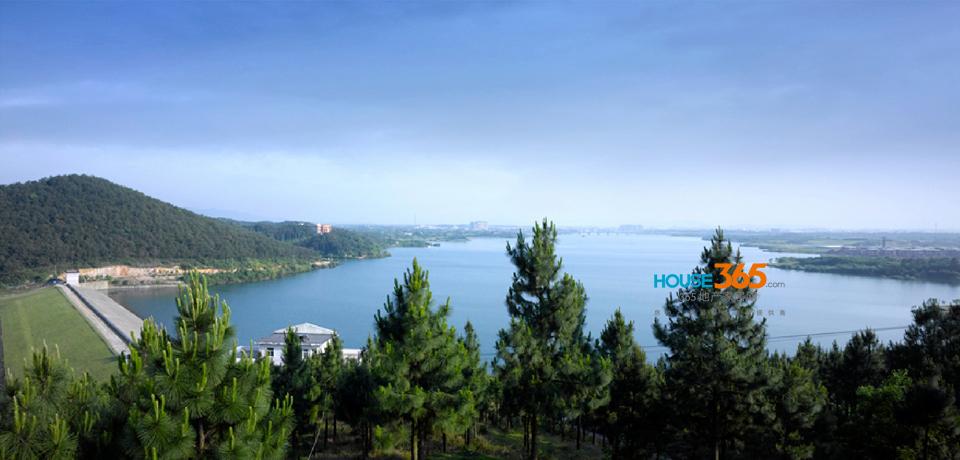 大图|德基展抢先看③卧龙湖国际社区-南京房地产-365