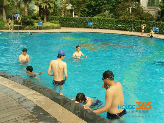 栖霞枫情水岸泳池开放 畅享热带风情