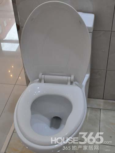 16弘阳家博会:特陶卫浴限量供应99元马桶