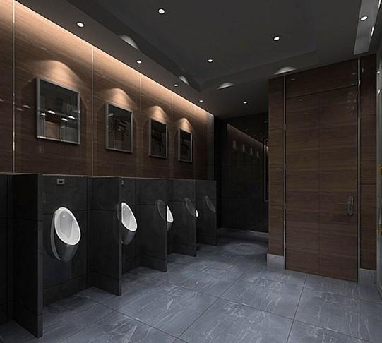 家居装修 公共洗手间效果图 很是奢华的卫生间设计 高清图片
