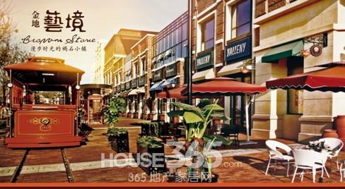 这里不仅规划了美式风情商业街,还规划了众多尺度各有不同的公共活动图片