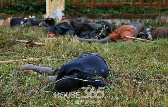 中非共和国食人族_中非共和国人吃人惨案现场 食人部落的逻辑揭秘