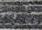 合肥瑶海区乐水苑小区车棚失火 上百辆电瓶车被烧毁